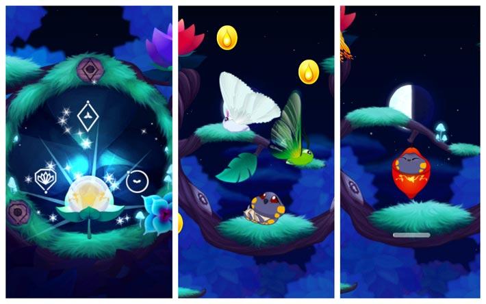Flutter: Starlight, les différents stades de développement des papillons