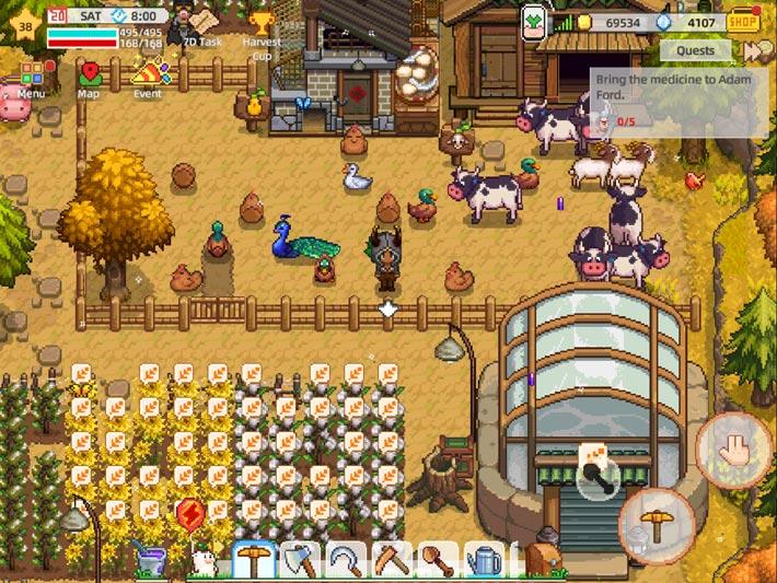 Harvest Town, élevage et récolte