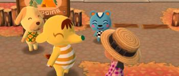 Conseils sur les campeurs et tips divers - Animal Crossing: Pocket Camp